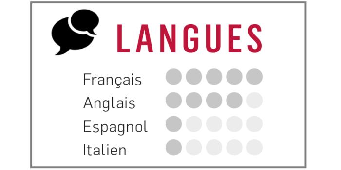 niveau de langue dans un cv