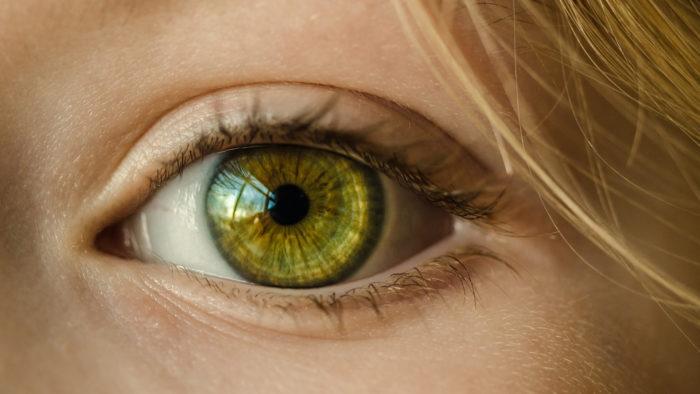 Les métiers de l'oeil ont besoin de mains d'oeuvre alors pensez-y